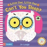 Книга с движущимися элементами Little Owl, Little Owl Can't You Sleep?