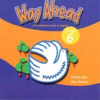 Установочный диск Way Ahead New Edition 6 CD-ROM